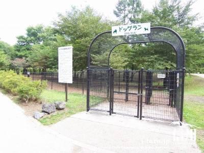 軽井沢 ドックラン 湯川ふるさと公園